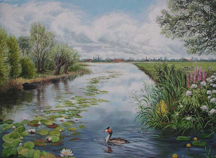 Dutch landscape with Great Crested Grebe